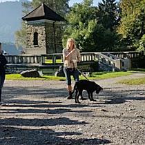 Hundetraining beim Wildpark-Parkplatz