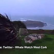 Schwerster Sturm seit 50 Jahren in Irland