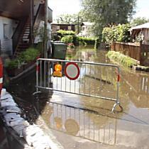 Hochwasser im Rheinvorland
