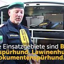 Home Invasion in Götzis: Arno und Polizeihund Odin über die Arbeit bei der Hundestaffel