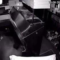 Bärenfamilie bricht in Pizzeria ein