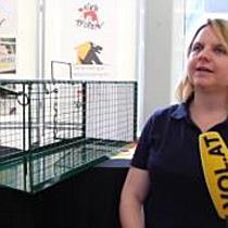 """""""Vier Pfoten"""": Lebendfallen für Streunerkatzen beim Tierschutzheim"""