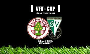 LIVE: FC Dornbirn vs. DSV