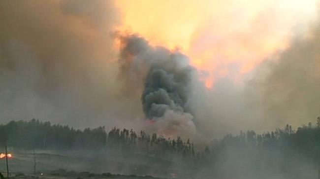 Zahlreiche Tote bei Waldbrand in Portugal