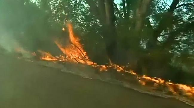 Zahl der Toten bei Waldbrand in Kalifornien steigt weiter