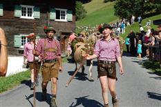 Viehabtrieb der Alpe Latons