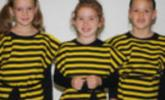 Bilder vom Bienenmusical
