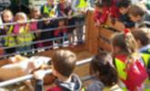 Marktfest war Besuchermagnet