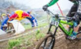 Downhill Cup in Brand