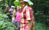 "Kräuterwanderung ""Hedi Blum"""