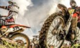 Motocross-Elite in Möggers