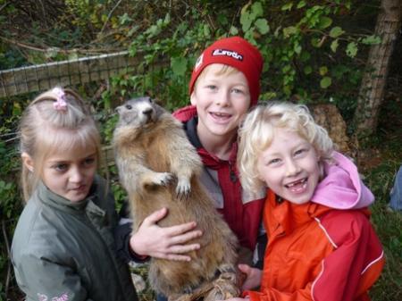 Die Kinder genossen den interessanten Lehrausgang in den Wald.
