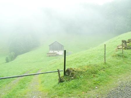 Um wertvolle Lebensräume geht es im Bahnhof Andelsbuch.