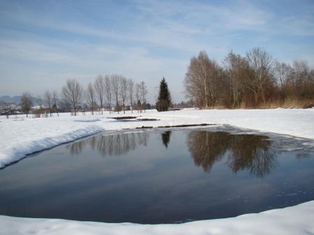 Die Landschaft präsentiert sich noch schneebedeckt. In den neuen Teichen sammelt sich immer mehr Wasser.