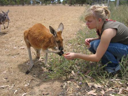 """Mitarbeit bei Natur- und Tierschutzprojekten ist eine der vielen Möglichkeiten von """"Ökojobs"""", über die das aha am 4. Juni informiert."""