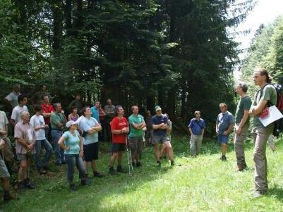 """Peter Feuersinger erklärt das Projekt """"Schutzwald Hittisau-Bolgenach"""""""