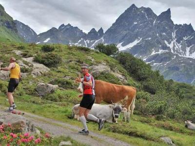 Bild: Wer Freude an sportlicher Aktivität hat, für den ist der 7. Montafon-Arlberg-Sparkasse-Marathon oder -Marsch genau das Richtige! Diese Aufnahme entstand am 5. Juli 2008.