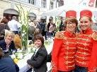 Ein Kunst- und Genussfest: das Anton-Schneider-Straßenfest