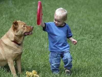 Frisbee macht in jedem Alter Spaß. (Foto: Istopckphoto)