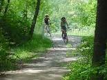 Auch die Radwege der Runa- und Paspelsstrasse sollen durchgehend saniert werden