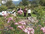 Brigitte Heinzles Gartenparadies