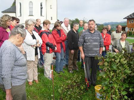 Der Beerensträucher-Schnittkurs mit Klaus Heregger stieß auf großes Interesse.