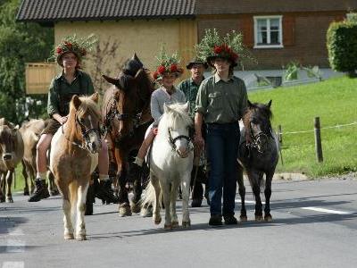 Jedes Jahr ein Erlebnis für Jung und Alt - Der Alptag in Schwarzenberg