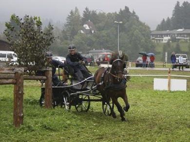 Lukas mit seinem Pferd Elton beim Marathon.