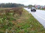 Bild: Hier zwischen der Hochwasserrückhaltefläche und der Paspelsstraße wird 2010 ein Radweg gebaut.