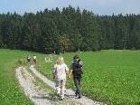 Herbstwanderung in Eichenberg.