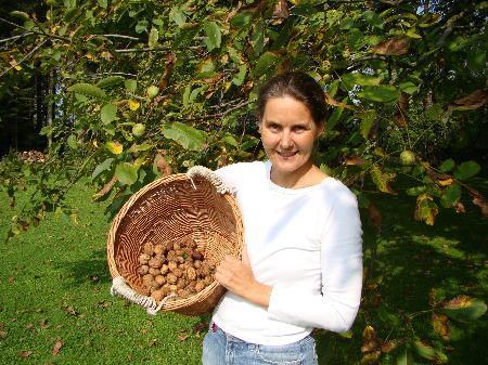 Marion Frank-Matha empfiehlt: Nüsse möglichst bald nach dem Fallen aufklauben.