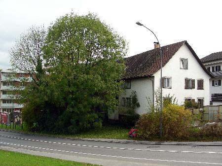 Das alte Bauernhaus am Elektra-Bühel in Bregenz soll einer Wohnanlage weichen