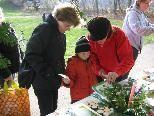 Große Auswahl an Advent und Weihnachtsdekoration