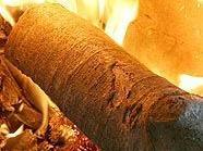 Die Tatwaffe, ein Holzscheit, ist verbrannt