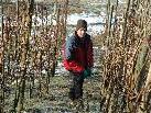 Frank Bregant arbeitet in seiner Freizeit auch bei eisigen Temperaturen im Weinberg.