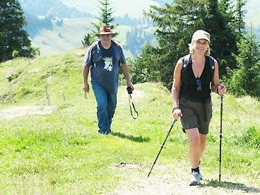 Wanderführerlehrgang wird im Silbertal angeboten