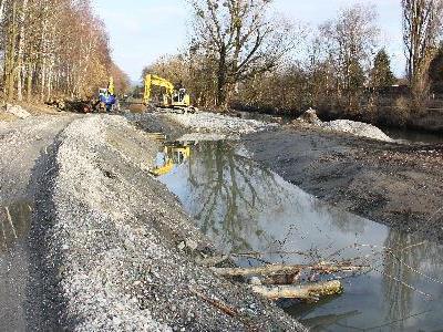 Den Binnenkanal bei Höchst bauen Bagger zu einem naturnahen Gewässer um. Seitenarme sollen Laichplätze für Fische und Amphibien bieten.