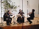 """Ein Stammensemble - das  """"epos:quartett""""."""