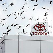 Hat Toyota schnell genug auf gefährliche Defekte reagiert?
