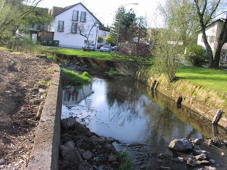 Renaturierungsarbeiten am Dorfbach Hard