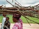 Frauen beim Holzholen in Mdabulo/Tansania