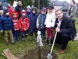 Pflanzung eines jungen Nussbaums mit Bürgermeister Markus Linhart