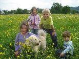 Bachblütentherapie ist für Kinder wie für Tiere gleichermaßen geeignet.