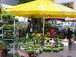 Blumenmarkt am Sparkassenplatz