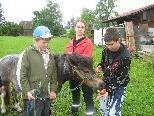 Da staunt selbst Pony Trixi bei so viel Action am Bauernhof