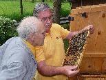 """Der Bienenzuchtverein lädt zum """"Tag des offenen Bienenstocks""""."""