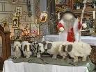 Der Gute Hirte hütet seine Schafe - Arbeit der Erstkommunionskinder von Silbertal in der örtlichen Pfarrkirche.