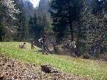 """Hilti Lehrlinge rückten zum """"Landschaftsputz"""" ins Natura 2000 Gebiet aus."""