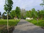 Neue Lindenallee