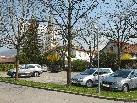 Neue Parkorganisation in der Hofsteigstraße